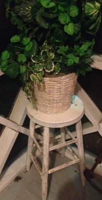 porch flower