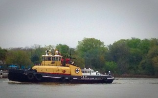 River Street tug boat. Toot toot!